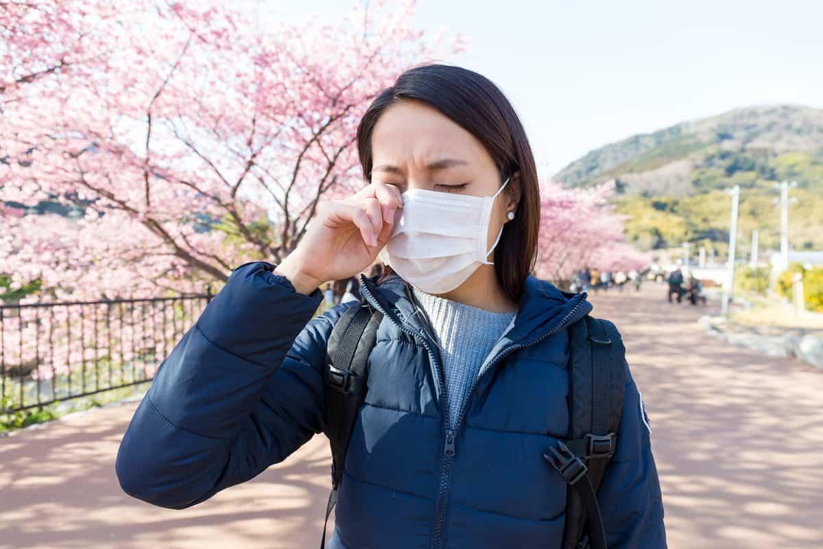 combatir alergia estacional